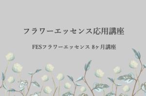 FE banner 02